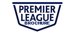 premier league copy logo