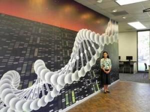 Business Wall Murals