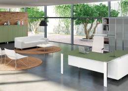 Executive Desks - Office Desks - Contemporary Desks