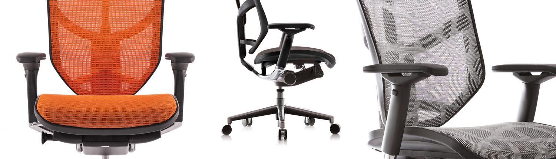 Enjoy Mesh Chair - Ergonomic Chair - Ergonomic Chairs - Office Chairs