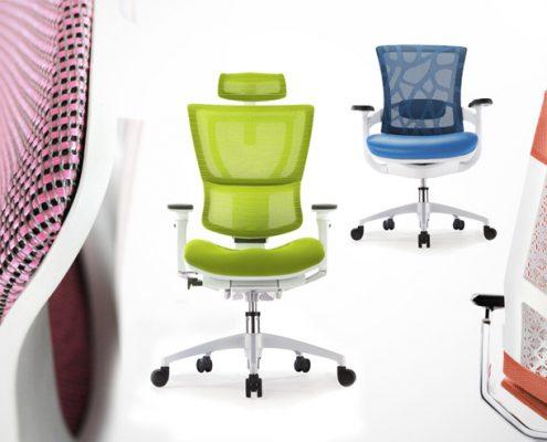 Ergonomic Chair - Ergonomic Chairs - Office Chairs