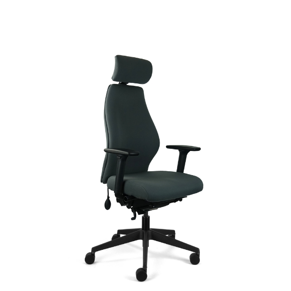 Solo Ergonomic Chair